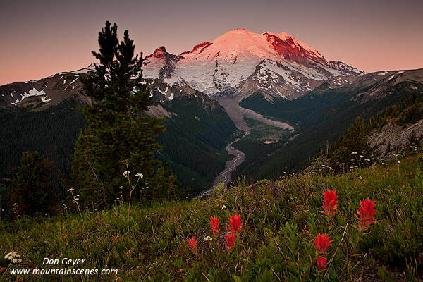 Last sunrise of 2012, did not disappoint (Mt. Rainier) : pics