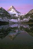 Image of Mount Assiniboine reflected in Lake Magog, dawn
