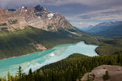 Image of Peyto Lake
