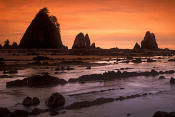 Image of Point of the Arches, Shi Shi Beach, Olympic National Park
