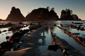 Image of Point of the Arches, Shi Shi Beach, Olympic National Park.