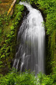 Image of McCloud Falls, Columbia River Gorge
