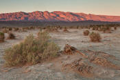 Image of sunset on Kit Fox Hills above Mesquite Sand Dunes, Death Valley