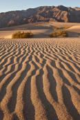 Image of Mesquite Sand Dunes, Tucki Mountain, Death Valley