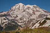 Image of Mount Rainier above Sunset Park
