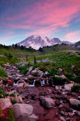 Image  of Mount Rainier and pink clouds, Edith Creek.