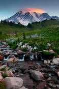Image of Mount Rainier and lenticular cloud, Edith Creek.