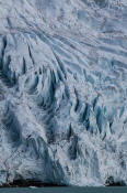 Image of the Berg Glacier above Floe Lake, Mount Robson