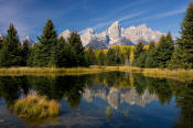 Image of Tetons reflection at Schwabacher Landing, Grand Teton National Park
