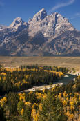 Image of Grand Teton above fall colors, Snake River Overlook, Grand Teton National Park