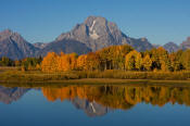 Image of Mount Moran and fall colors reflection at Oxbow Bend, Grand Teton National Park