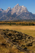 Image of Grand Teton above buck-and-rail fence, Grand Teton National Park