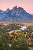 Image of Grand Teton above aspen in autumn, Snake River Overlook, Grand Teton National Park