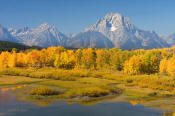 Image of Mount Moran above apen, autumn, Oxbow Bend, Grand Teton National Park