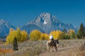 Image of horseback rider below Mount Moran in autumn, Grand Teton National Park