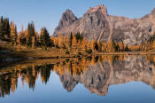 Image of Wiwaxy Peaks and fall larches reflection, Opabin Plateau